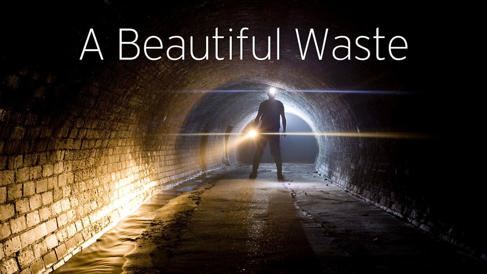 WHAT WE DON'T SEE: A Beautiful Waste