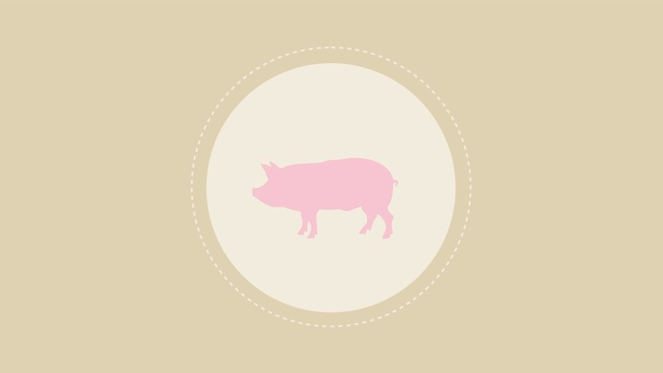 CARBON HOOFPRINT: The Carbon Footprint of a Serving of Pork