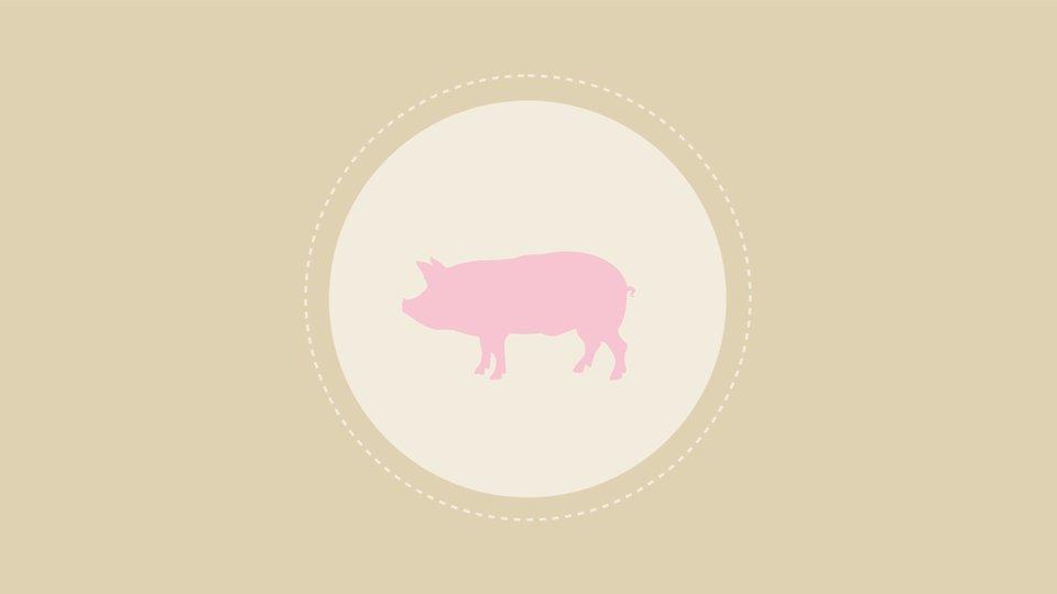 CARBON HOOFPRINT: The Carbon Footprint of a Serving of Pork