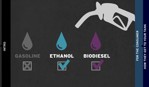 THE POWER IN PLANTS: The Biofuel Alternative